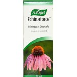 Echinaforce Echinacea Drops 100 ml